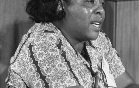 Fannie Lou Hamer testifying before the Credentials Committee at the Democratic National Convention in Atlantic City in August 1964.